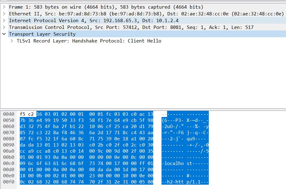 TCP Dump of SSL Handshake